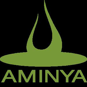 Aminya Academy