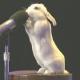 Resilient Rabbit