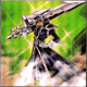 arrow_406™