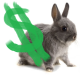 Money Rabbit