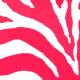 fran697raft Zebra
