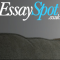 Write My Essay-Essay Spot