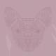 Pastelrosa