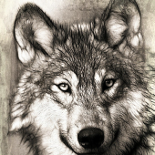 wolfton