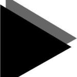 blackturtle