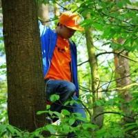 Stump_C