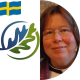 Anna Lindén