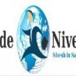 TradeNivesh Advisery