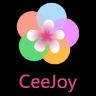 CeeJoy Projects