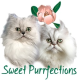 Sweet Purrfectionss