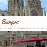 """BURGOS """"Tierra de Castillos"""""""
