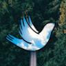 pigeonbird