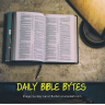 Bible blogger