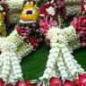 Neethan Nava
