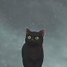tinyv0idcat