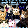 Wing Commander Basil & The B Team