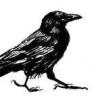 ravencrimereads